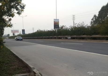 广东肇庆高要市金渡镇60亩工业地转让 实景图