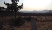 烟台莱州市1200亩荒山荒地转让