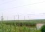 山东东营4000亩太阳能光伏发电项目转让实景图
