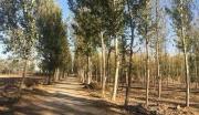 北京市大兴区定福庄乡252亩集体工业用地