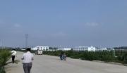 山东烟台莱阳手续齐全工业用地转让