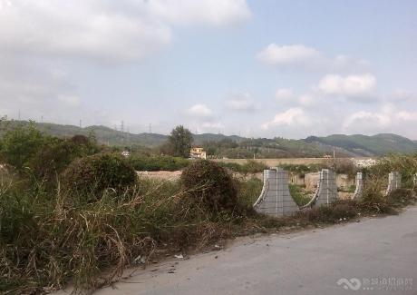 广东东莞65亩工业地紧急转让