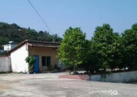 急!惠州惠城區100畝舊廠房轉讓 實景圖