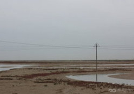 山东东营河口区海产养殖盐业化工滩涂惠招全国合作商实景图