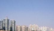 肇庆鼎湖区98亩国有一手工业地出售