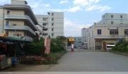 东莞沙田虎门港11万平米厂房工业土地出售转让@东莞土地网