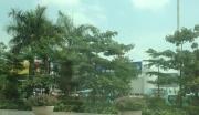 广东茂名茂港区商业办公用地整体转让