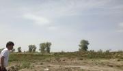 新疆阿克苏地区沙雅县综合用地整体转让