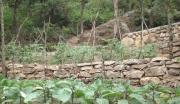 山东济南低价450亩土地转让