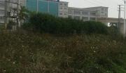 广东惠州博罗县商业办公用地整体转让