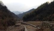 浙江杭州桐庐县 林地 整体转包 使用年限50年