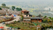邛崃新场古镇旁,茶园商业用地转让可搭配农用地