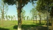 苏州吴中经济开发区尹山湖片区,尹山湖路东侧,兴郭路北侧171亩住宅地块