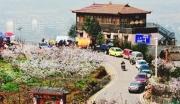青白江商业用地部分转让可搭配农用地适合养生休闲旅游产业