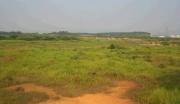 江门台山商住用地出售,约159.3亩,投资升值一流