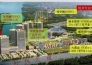 武汉经济开发区万达广场五星酒店整体出售实景图